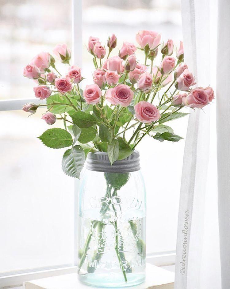 Pin By Zippie Isabella On A Few Of My Favorite Things In 2020 Pretty Flowers Pink Flowers Flower Arrangements