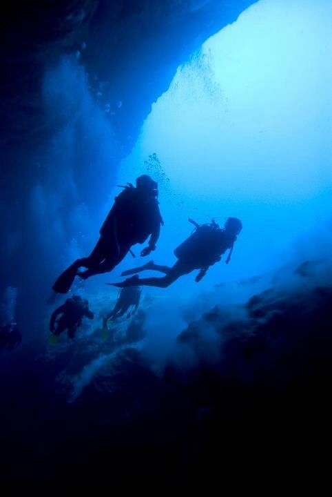Shocking Blue Divers
