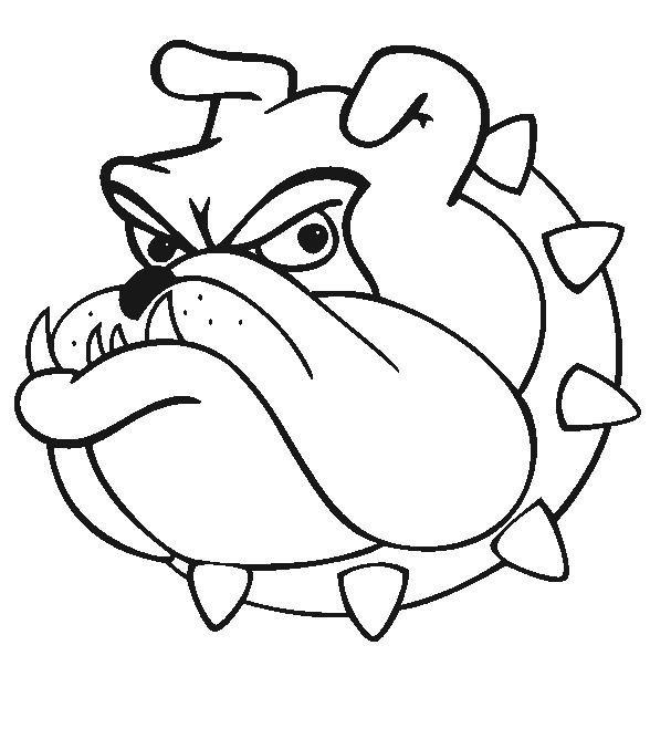 Bulldog Cartoon Drawing Bulldog Drawing