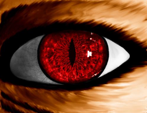 Red Eye Demon Cat Favourites By Tara17 On Deviantart Demon Anime Eyes Anime