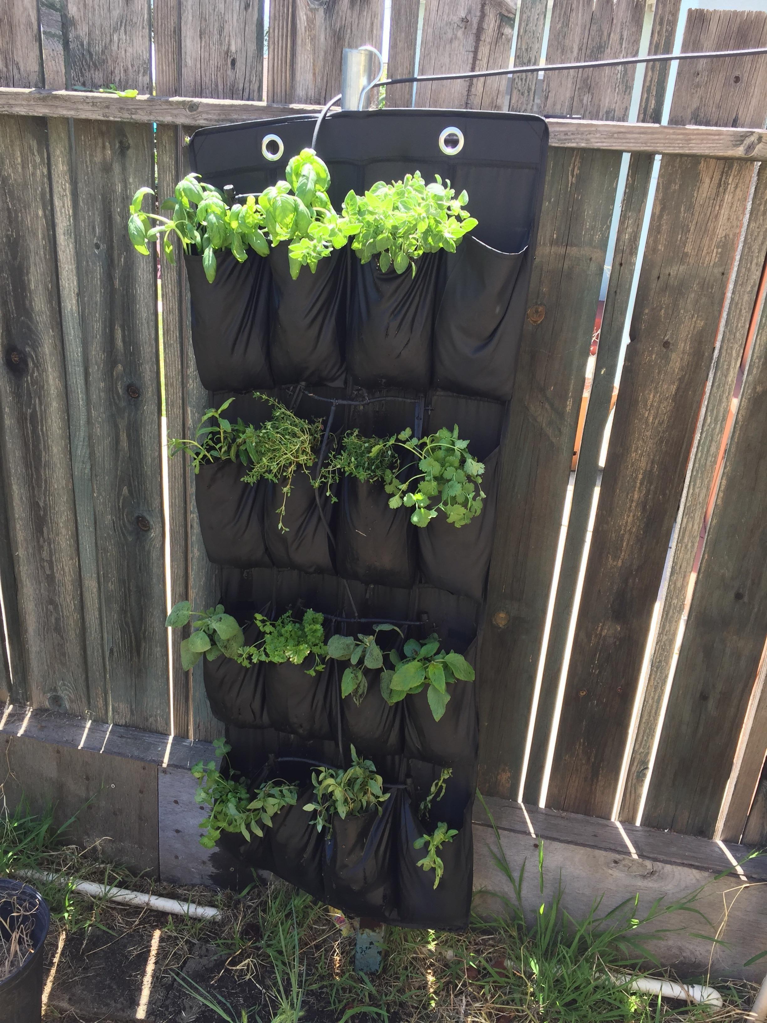 $4 IKEA shoe rack makes an excellent vertical planter #gardening