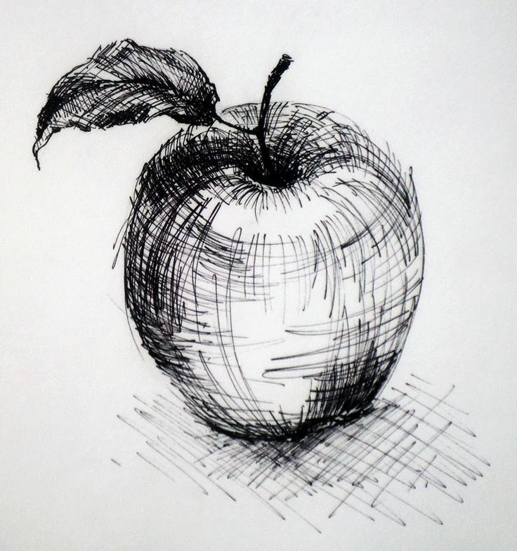 Image result for beautiful apple drawing