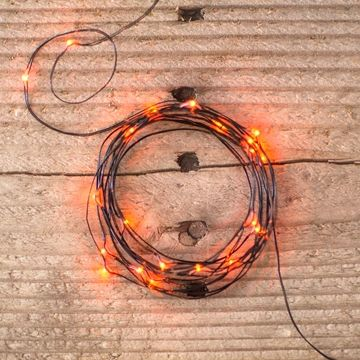 official photos ea0ab 9c6e5 Buy Fairy Lights, 10ft, Black Wire, 30 LED, Multifunction ...