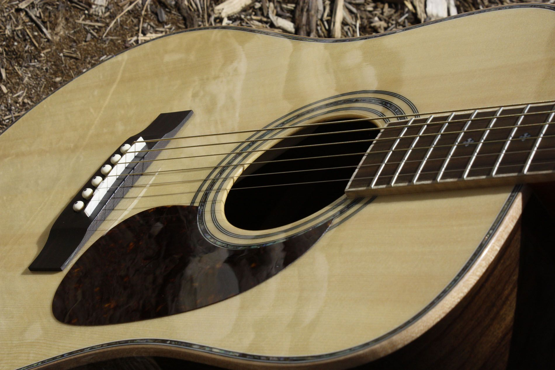 The Zager Guitars Is Totally Positive And Best Company Because The Users Are Connected With The Performance Of Their Musical Instrument Gitarre