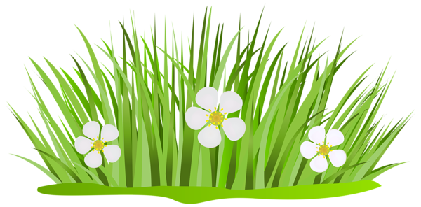Grass Patch With Flowers Png Clip Art Image Clip Art Art Images Free Clip Art