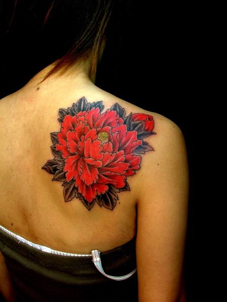 Red Carnation January Birth Flower And Ohio State Flower Body