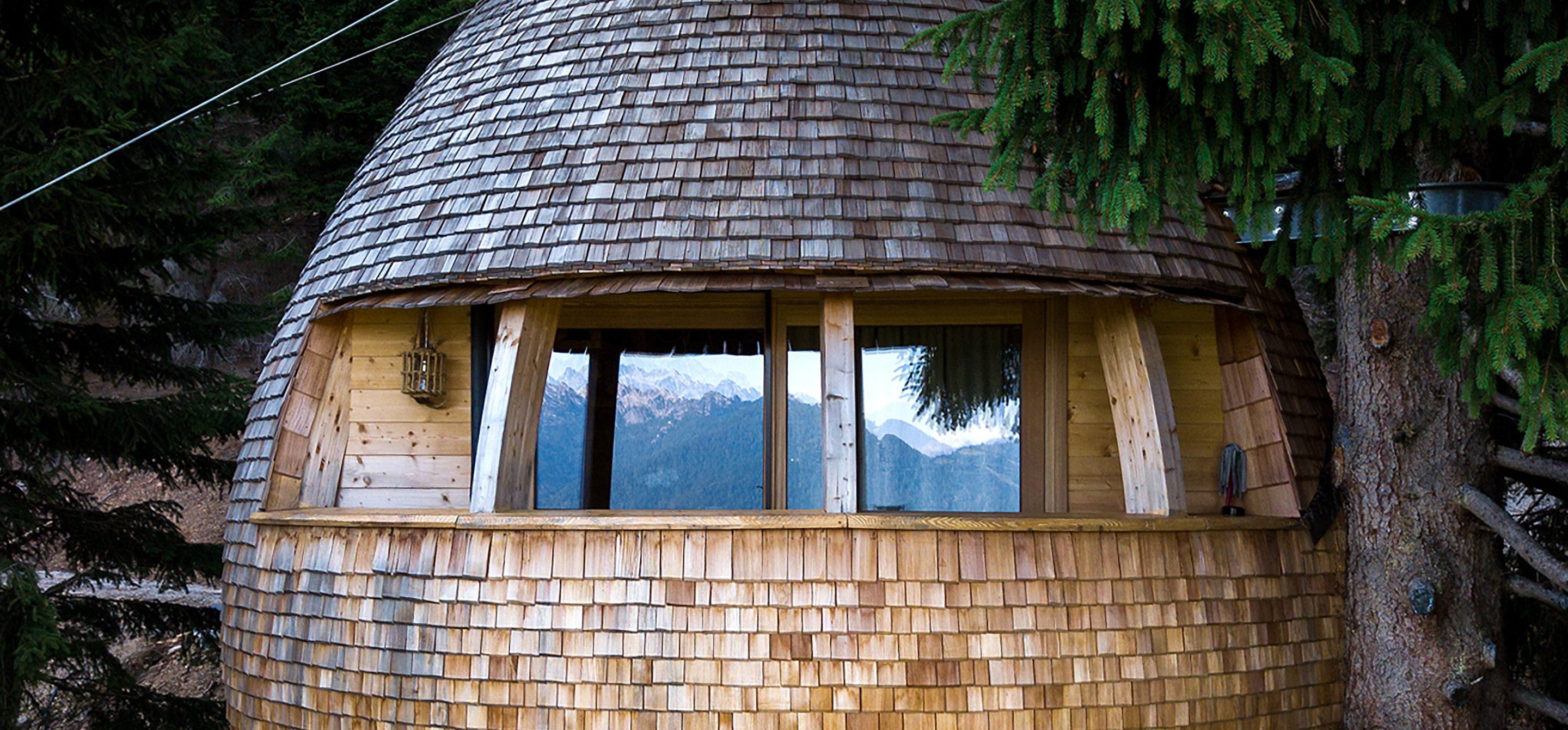 Photo 6 Of 12 In These Tree Houses In The