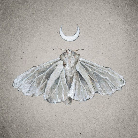 Lunar White Moth Print Of Oil Painting By Tinyartshop On Etsy