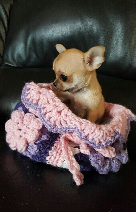Sleeping Bag For Puppy Chihuahua Small Dog Cat Beds Crochet