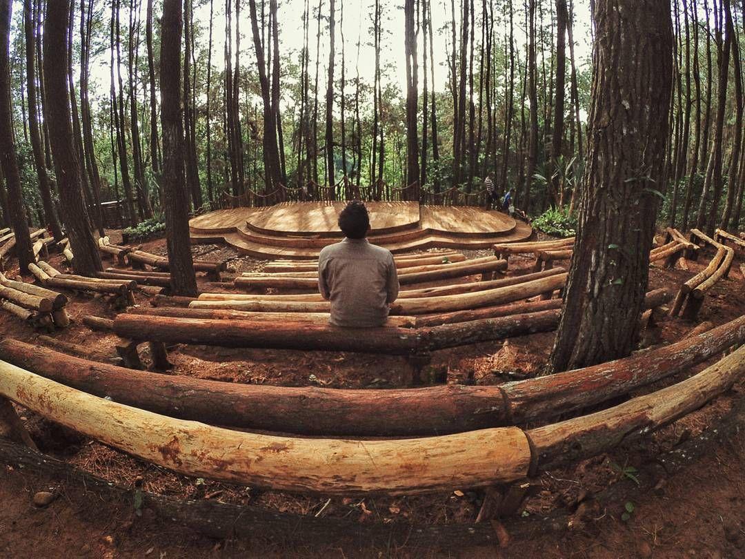 Hutan Pinus Imogiri Hutan Stonehenge Yogyakarta