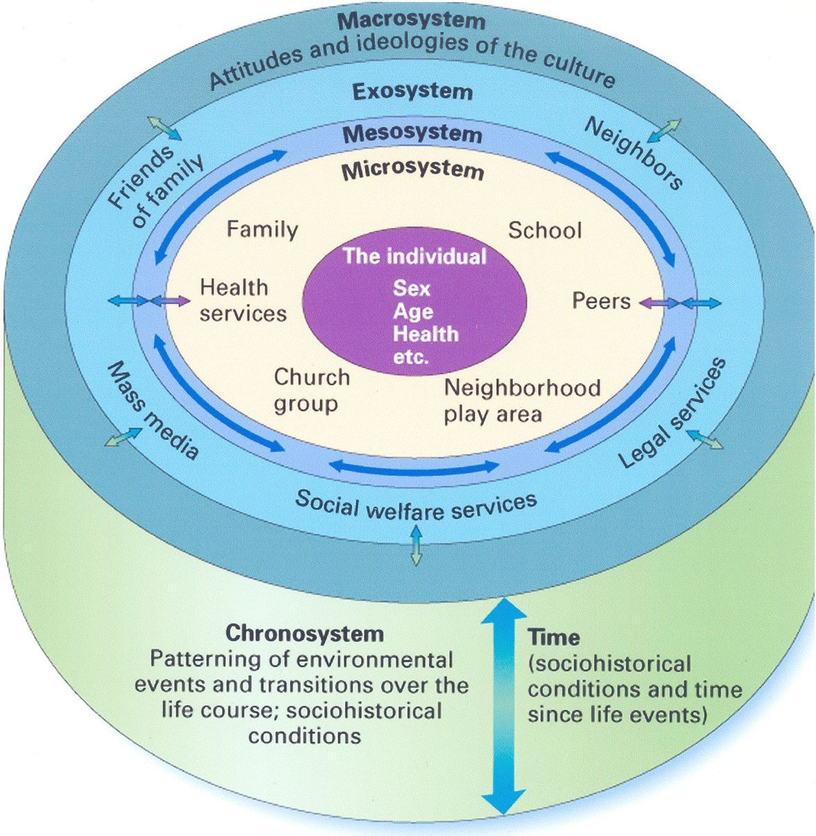Urie Brofenbrenner S Ecological Systems Theory Think About This In Relation To Your Own Life Usin Ecological Systems Theory Systems Theory Ecological Systems