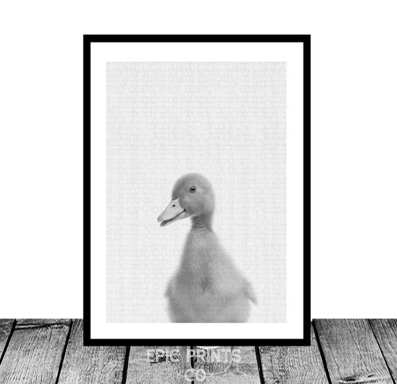 Duckling Print Cute Baby Duck Nursery Animal Wall by Epicprintsco