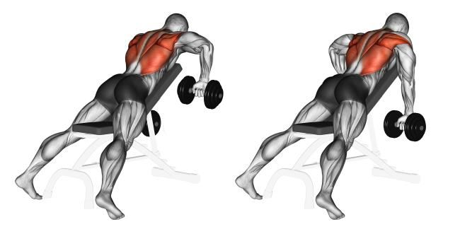 3 Dumbbell Moves You Have To Try Dumbbell Workout Gym Workout Tips Gym Workouts