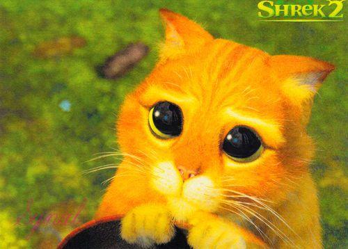 Lot Of 5 Dreamworks Fantasy Comedy Film Movie Monster Shrek 2 Poster Postcards Ebay Shrek Cat Cute Animals Animals