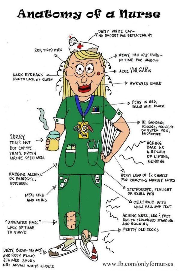 Anatomy of a Nurse.   I love being a nurse!   Pinterest   Anatomy ...