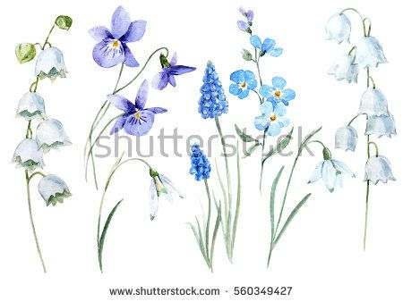 Watercolor Floral Set Spring Flower Lily Of The Valley Violet Snowdrop Blue Muscari Violet Flower Tattoos Floral Watercolor Wildflower Tattoo