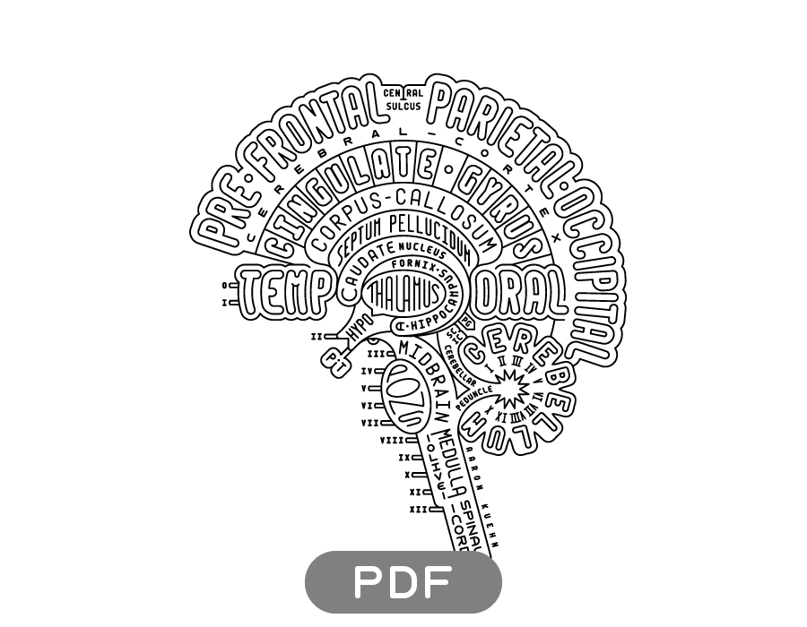 Print Your Own Brain Typogram An Excellent Anatomy Coloring Page No Commercial Use Do Not Alter The Art Credit Neuroscience Art Brain Art Brain Anatomy