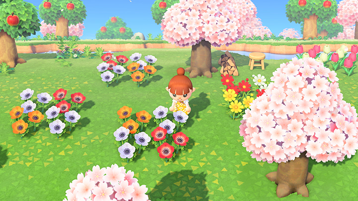 Animal Crossing New Horizons Do It Yourself Daddy Cherry Blossom Petals Animal Crossing Flower Guide