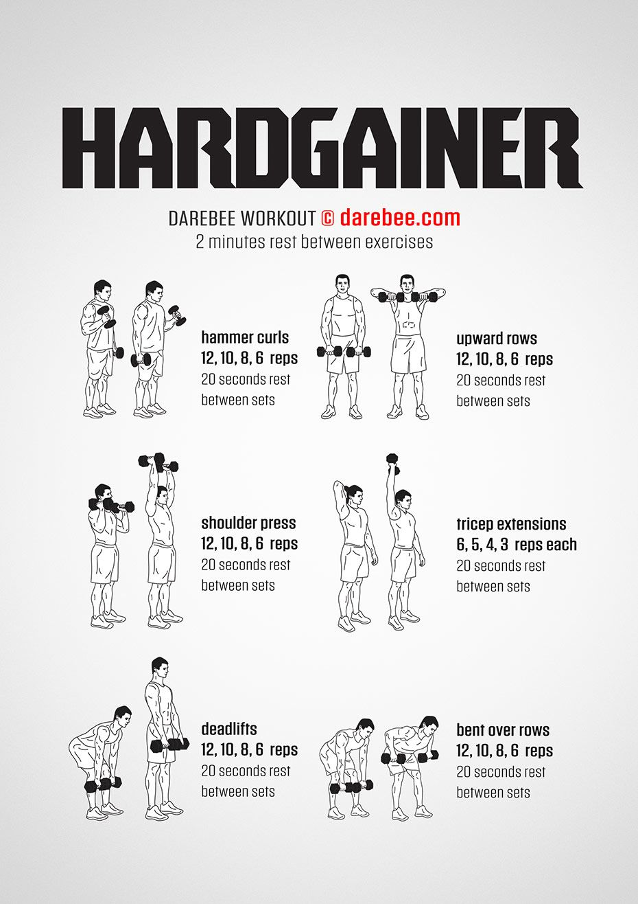 Hardgainer Workout Weights workout, Dumbell workout