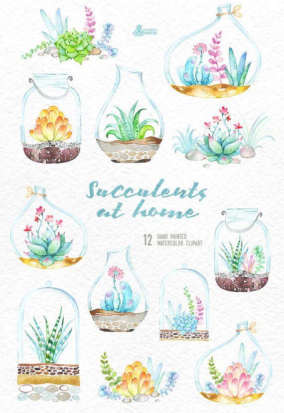 Sukkulenten zu Hause. Aquarell Blumen Sträusse und von OctopusArtis