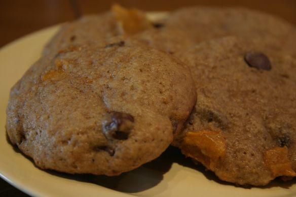 Great Grandma's Persimmon Chocolate Chip Cookies | Audie's Goodies