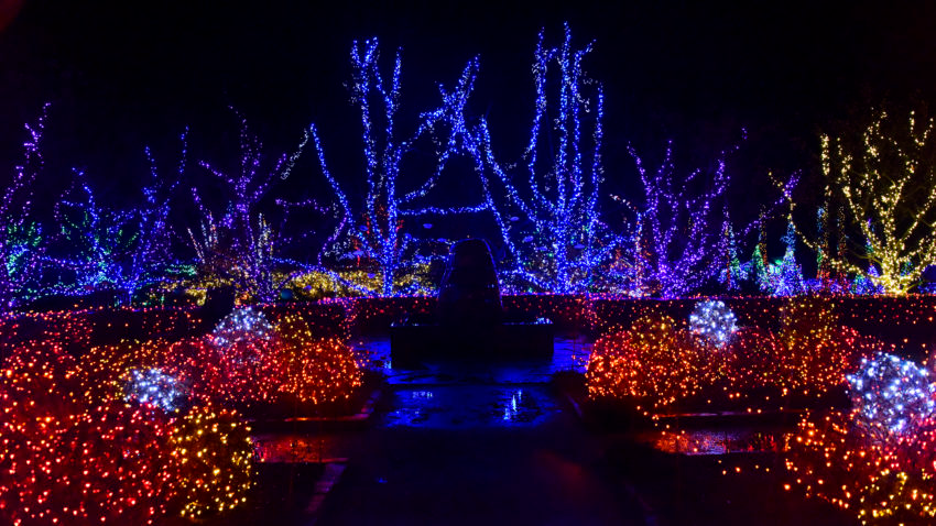 One Of The World S Most Spectacular Holiday Light Displays Is In New England According To Conde Nast Traveler In 2020 Holiday Lights Display Best Christmas Light Displays Christmas Light Displays