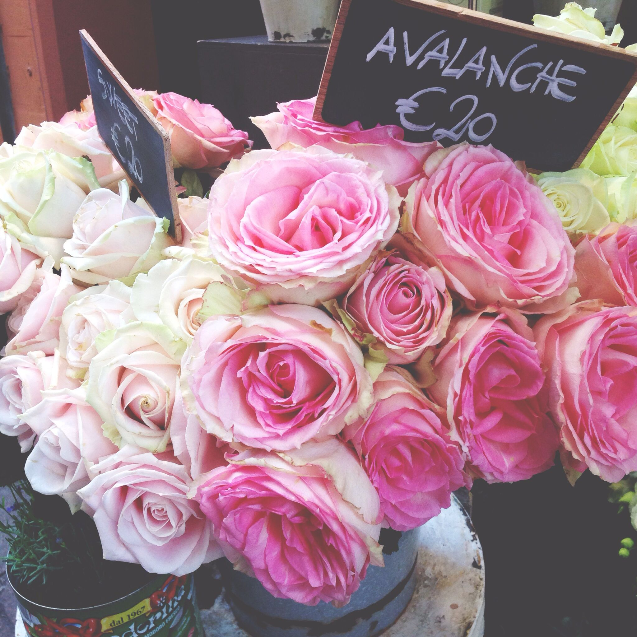 Bologna Flower Market Floral Pinterest Flower Market