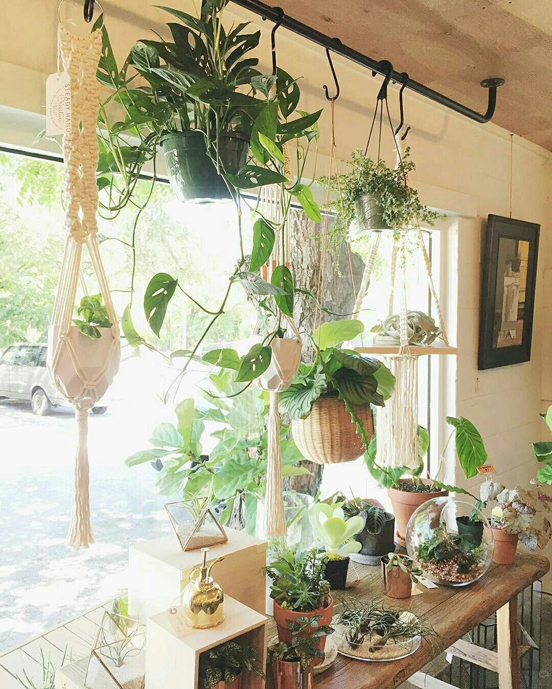 20 Diy Window Hanging Plants Ideas For Your Home Decoration In