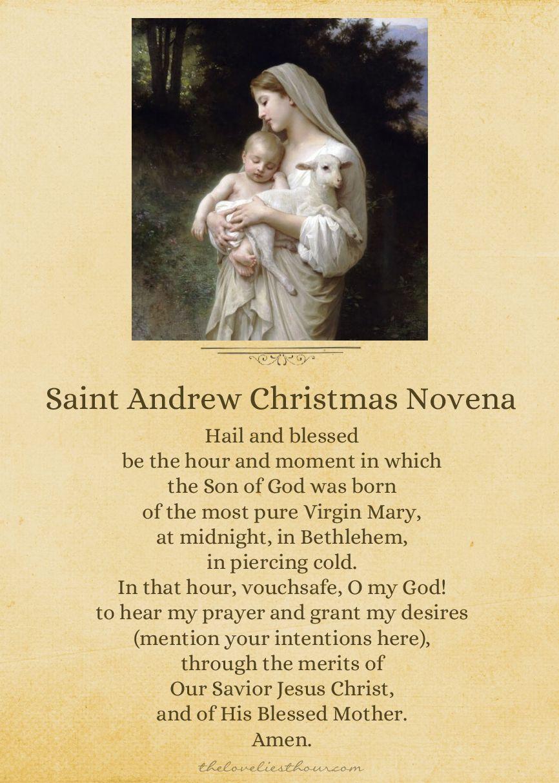 St Andrew's Christmas Novena #pinterest Starting on St. Andrew's ...