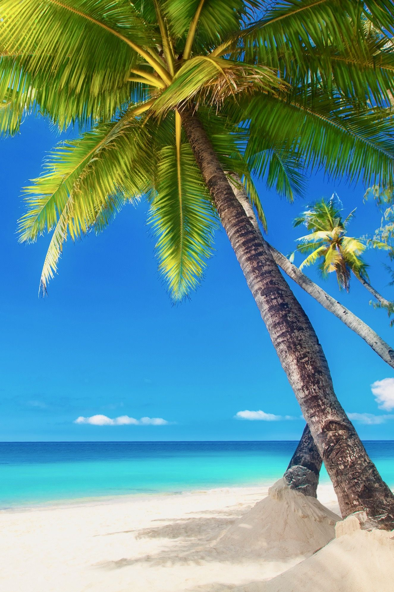 Quick And Easy Guide To The Best Caribbean Islands Planet Travel Family Destinationsfamily