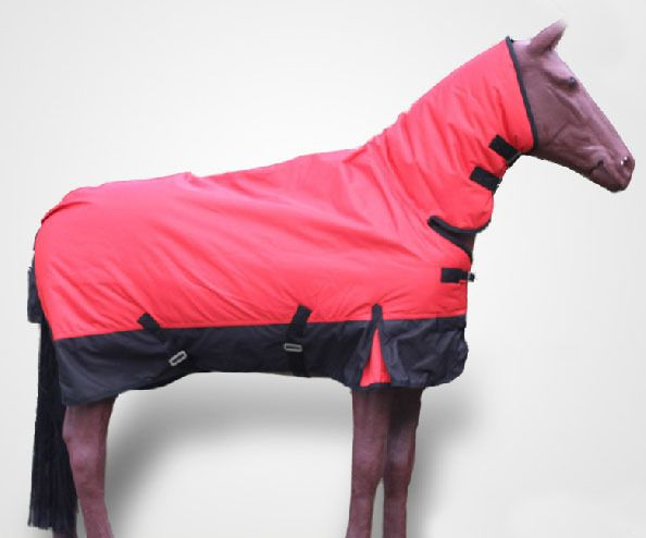 Horse Racing Clothes Winter Rain Proof
