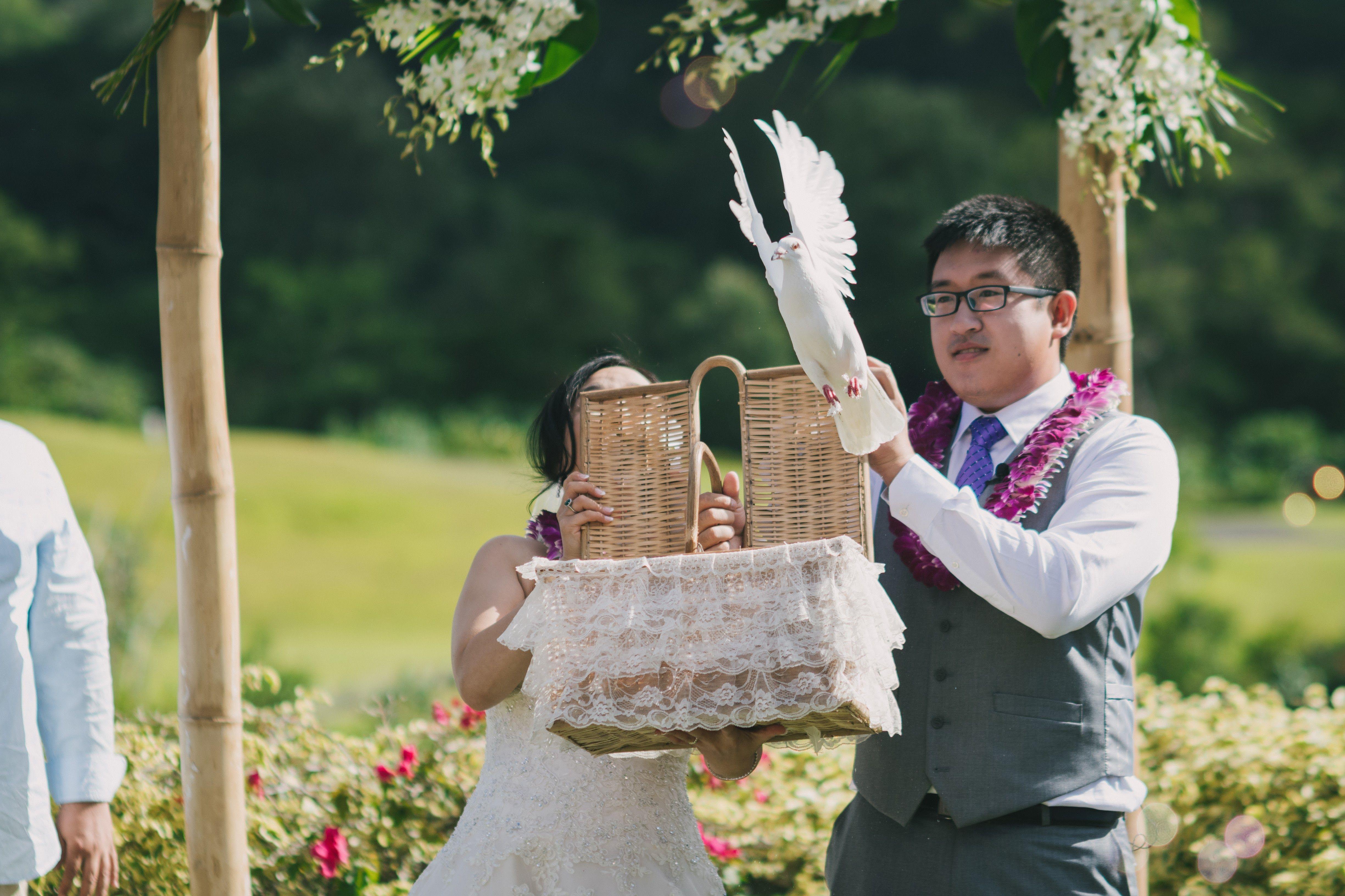 Photography Videography Hair And Make Up Isle Media Officiant I Do Hawaiian Weddings