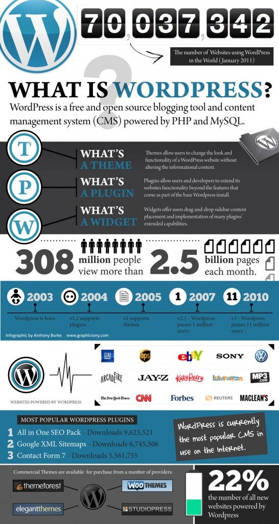 build your brand and your website with wordpress infographic