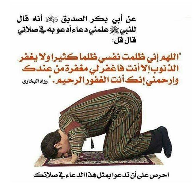 Thepug Islam Facts Islamic Information Prayer Book