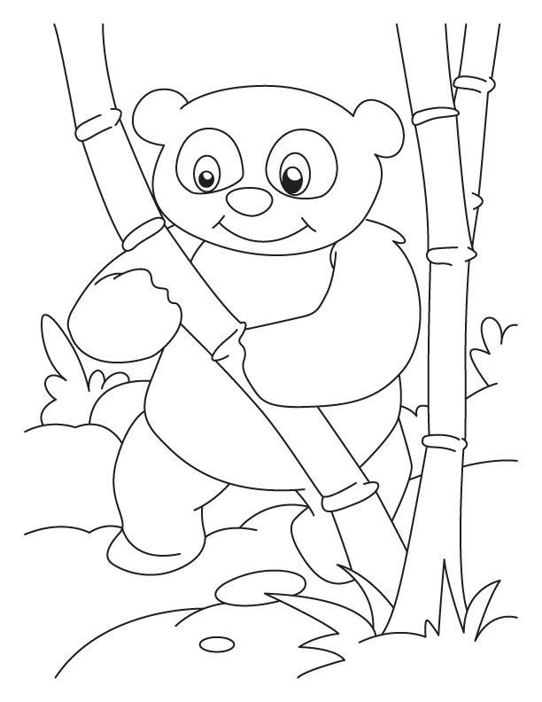 Bamboo lover panda coloring pages | String Art | Pinterest | Panda ...