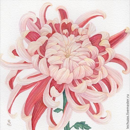 4 - Asiatische zimmerpflanzen ...