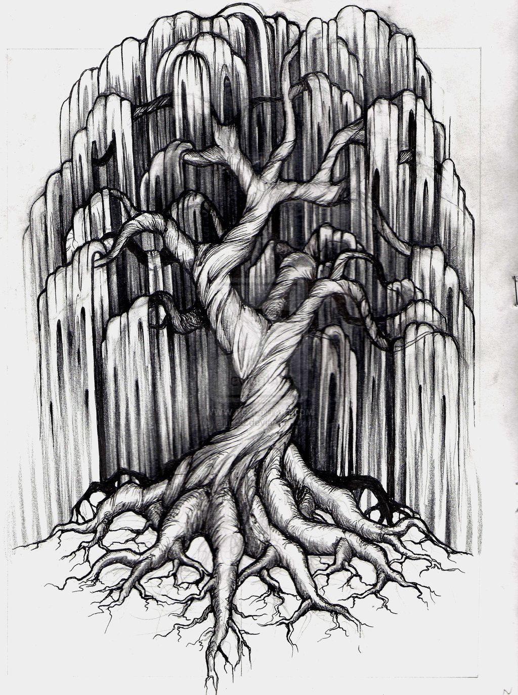 Willow Tree Tattoo By Aluc23 On Deviantart Willow Tree Tattoos