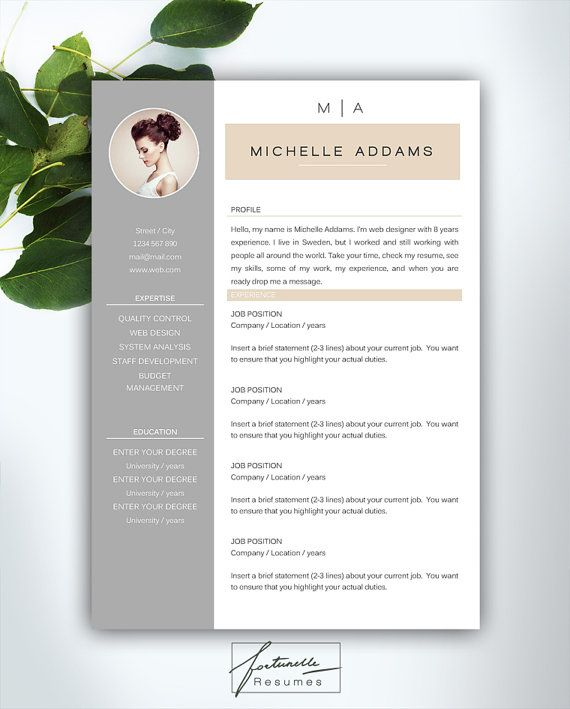 resume template 3 pages    cv template   cover letter