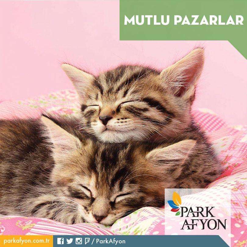 Park Afyon ailesi olarak mutlu ve huzurlu bir Pazar günü dileriz wink ifade simgesi  #ParkAfyon #Afyon