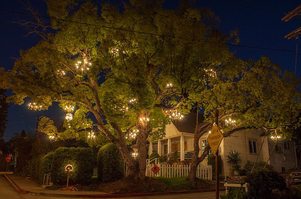 The Chandelier Tree in Silver Lake, Los Angeles. 30 vintage ...