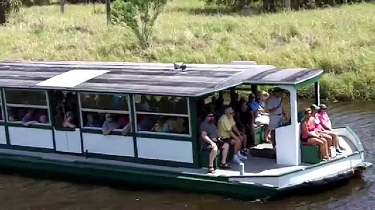 Myakka State Park Alligator Tour Boat Ride State Parks