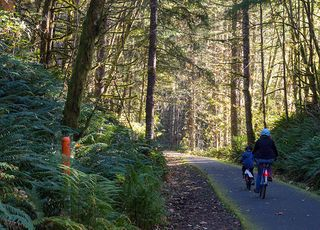 Banks Vernonia Trail Oregon Http Www Bicycling Com Rides Travel
