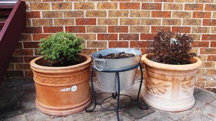 Gumtree Garden Containers Terracotta Pots Garden