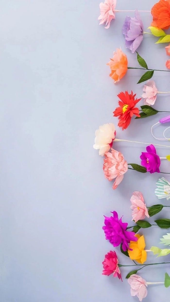 lots of different, colourful flowers, spring themed phone background, spring photos, blue background