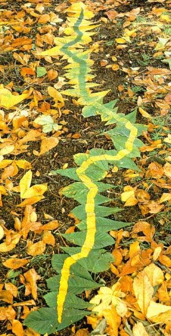 Andy Goldsworthy Line In Leaves Andy Goldsworthy Nature Art Landscape Art