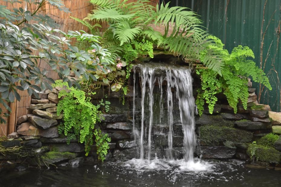 About AWG | Atlanta Water Gardens