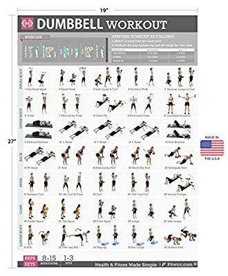 dumbbell exercises workout poster now laminated