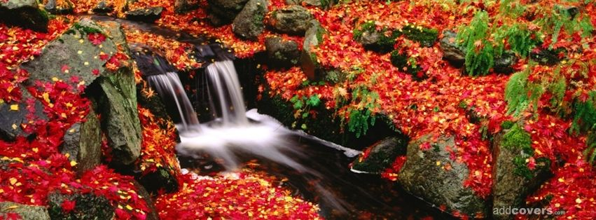 Free Fall Facebook Covers: Fall Waterfall Facebook Covers For Your FB Timeline