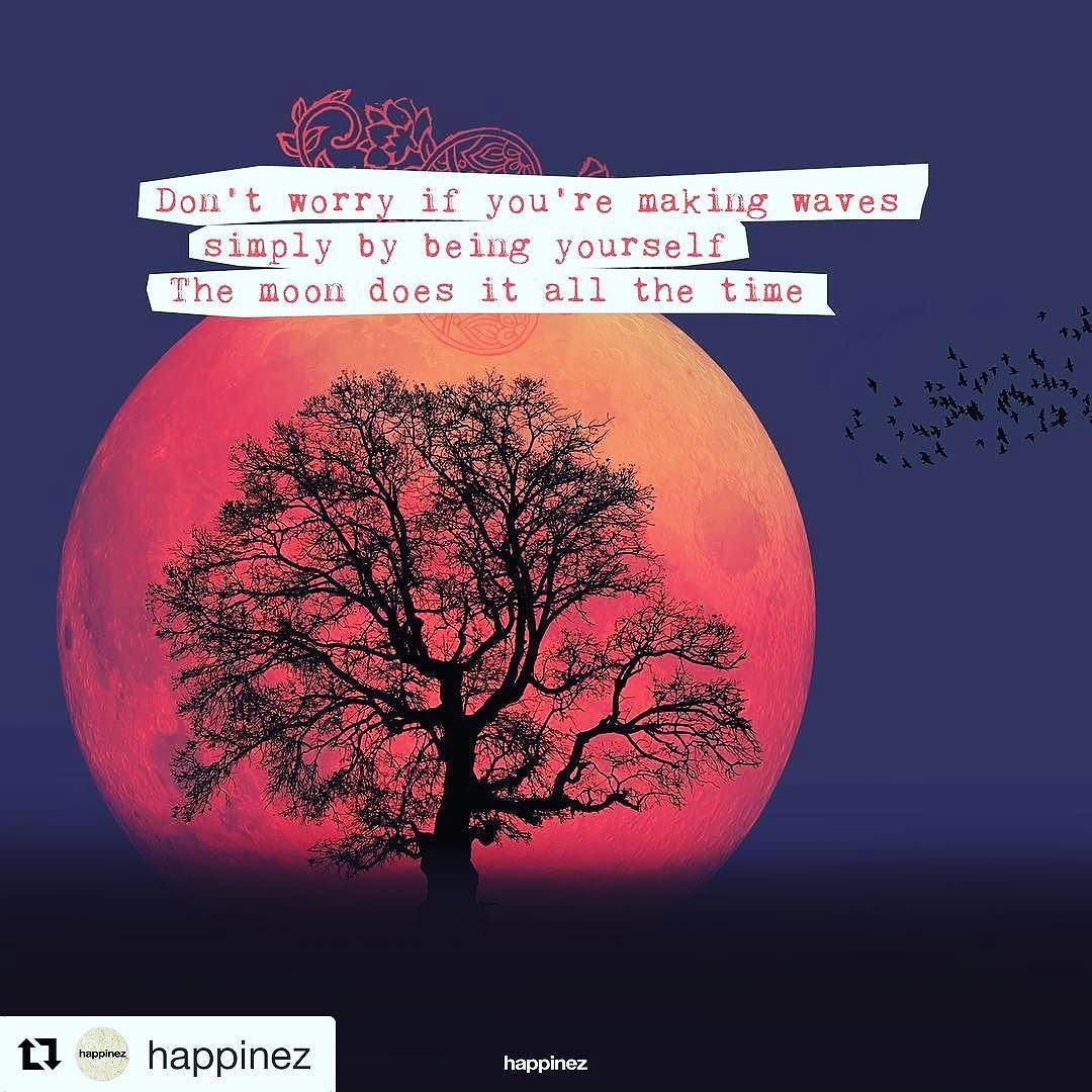 Happy Moonday Repost Happinez The Full Moon Yesterday Was Not Only The Closest And Brightest Supe Library Quotes Full Moon Quotes Funny Inspirational Quotes
