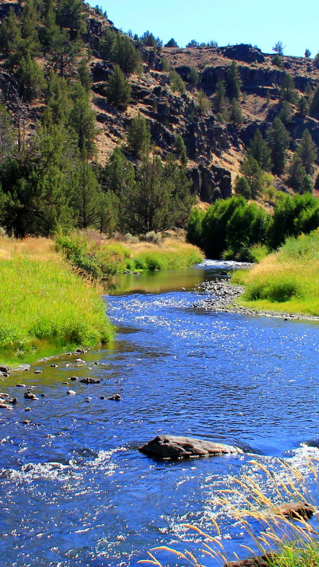 Iphone Wallpaper Wilderness river green grass blm